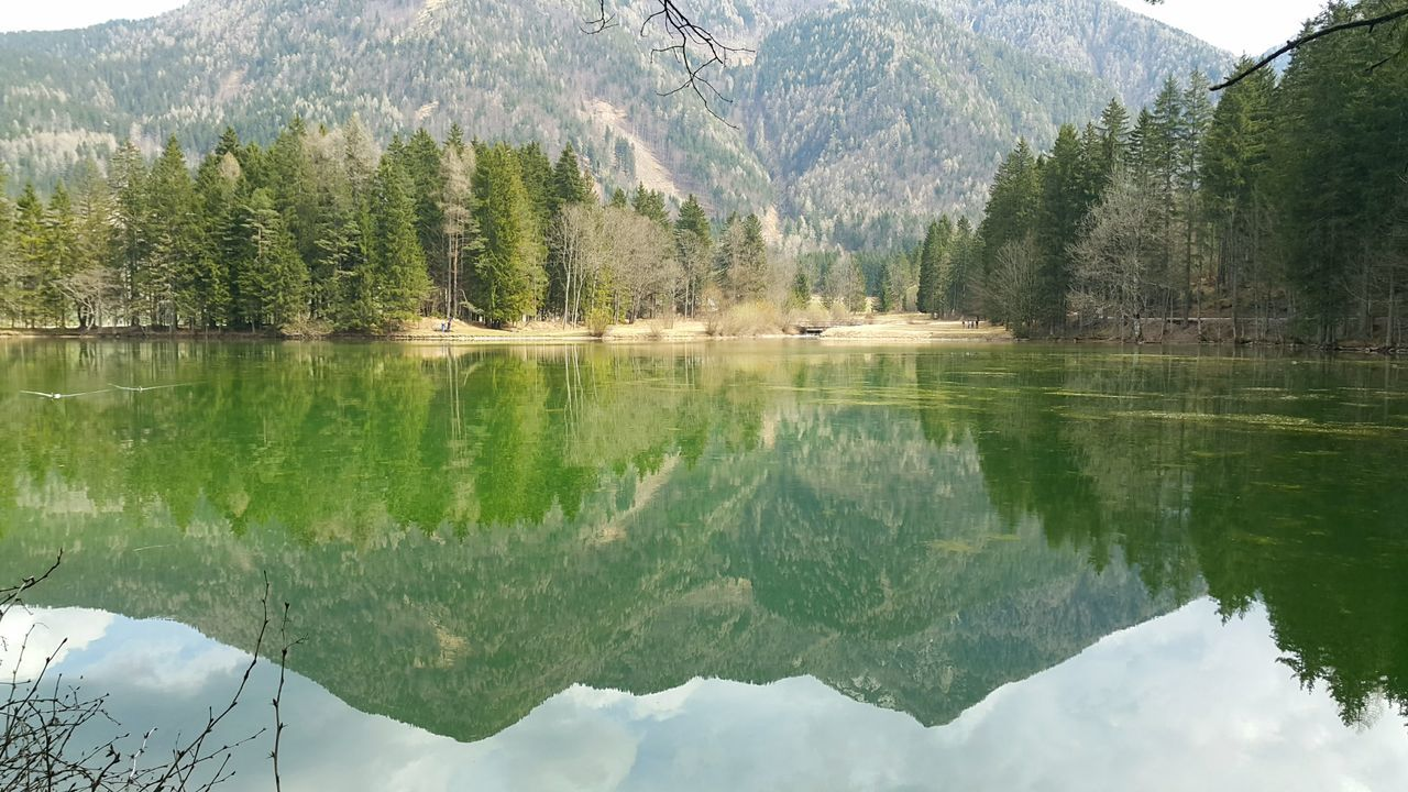 Jezersko, Slovenia Reflection Mountain Lake Water Tree Nature Mountain Range Day Beauty In Nature Outdoors Lake View Lakeshore Symmetry No People Reflection Forest Tranquil Scene Scenics Tranquility Sky Slovenia EyeEm Nature Lover EyeEm Best Shots Eye4photography  Nature Photography