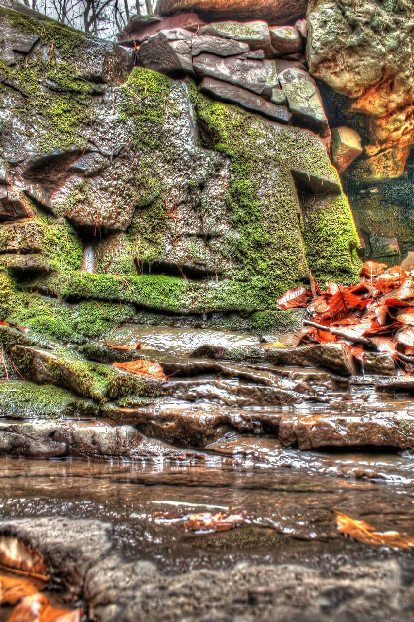 rock - object, nature, moss, no people, tranquility, day, outdoors, beauty in nature, water, close-up