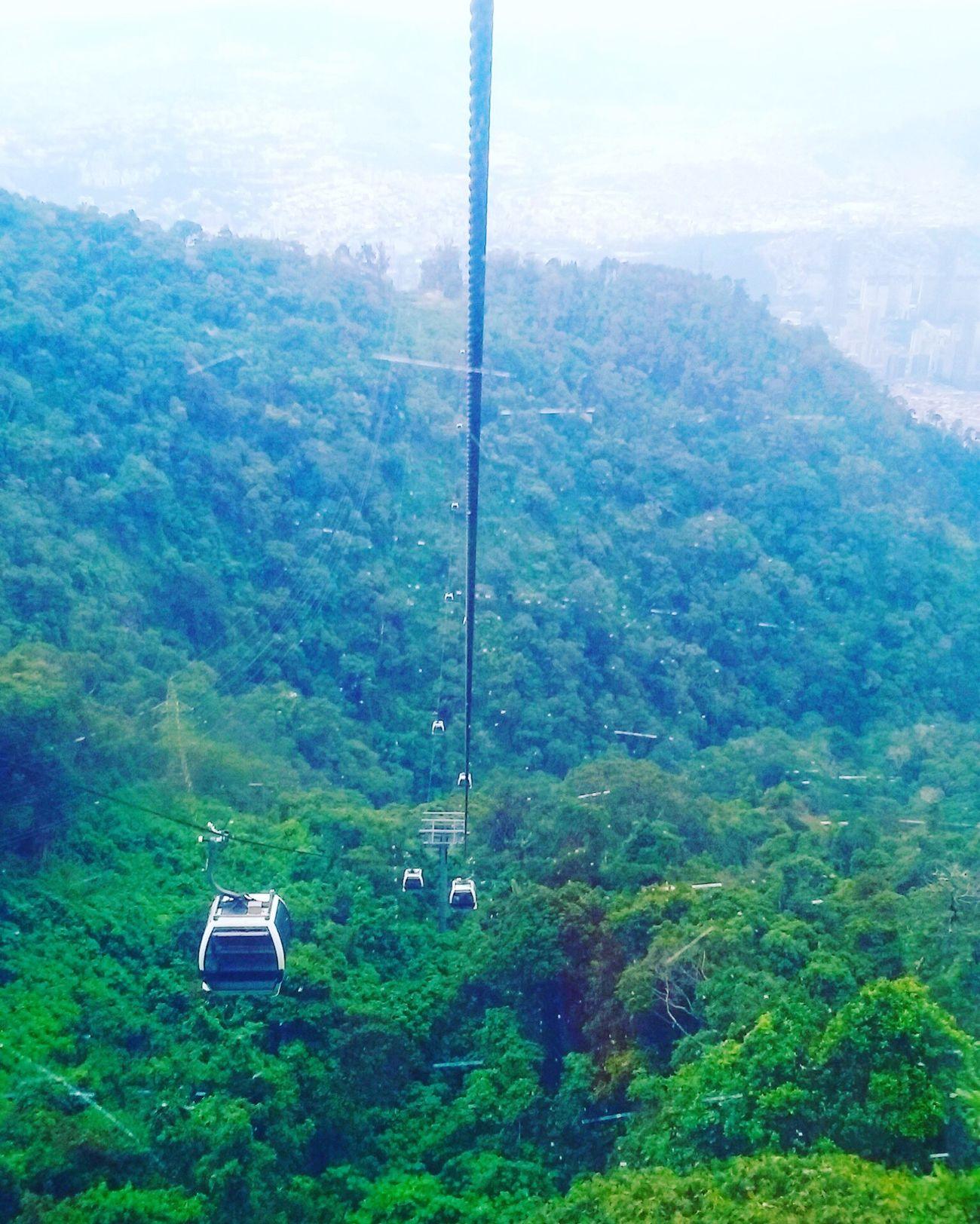 Venezuela Teleferico Warairarepano NaturalBeauty Transportation Mountain Avila Paz Belleza Word Scenics Connection Moments Plantas Vegetacion Wonderful