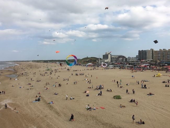 Enjoy the view and kites Kites Beach Sky Relaxing Enjoyment Scheveningen  Enyoing The View