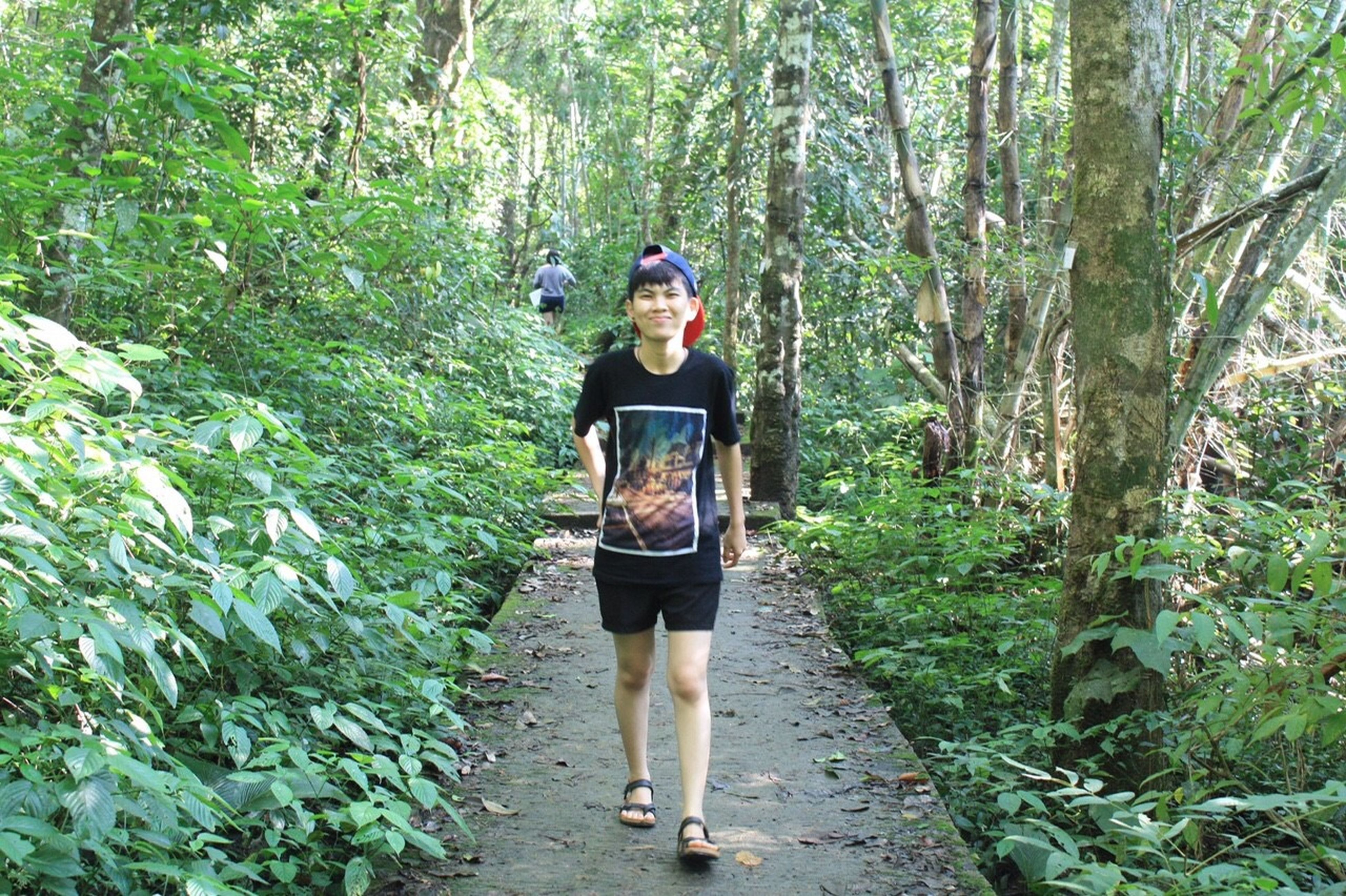 tree, forest, full length, rear view, lifestyles, leisure activity, walking, casual clothing, growth, nature, standing, tranquility, green color, tranquil scene, men, beauty in nature, the way forward, person