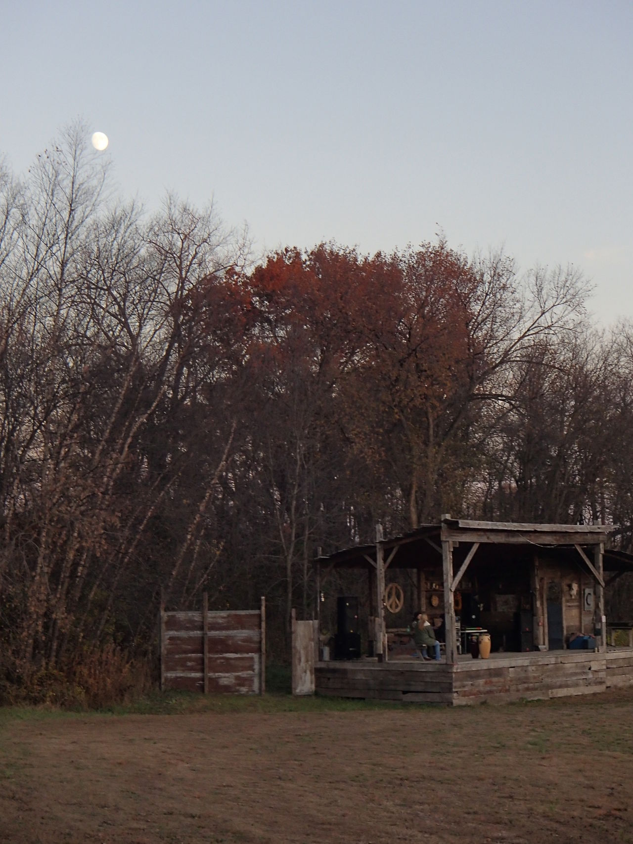 Architecture Building Exterior Built Structure Clear Sky Growth Moon Nature No People Outdoors Recycled Barn Wood Remote Sky Solitude Stage - Performance Space Tranquility Tree