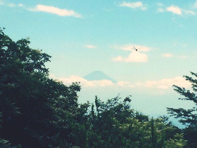 Looking Down Fuji Yatsugatake Dragon Fly