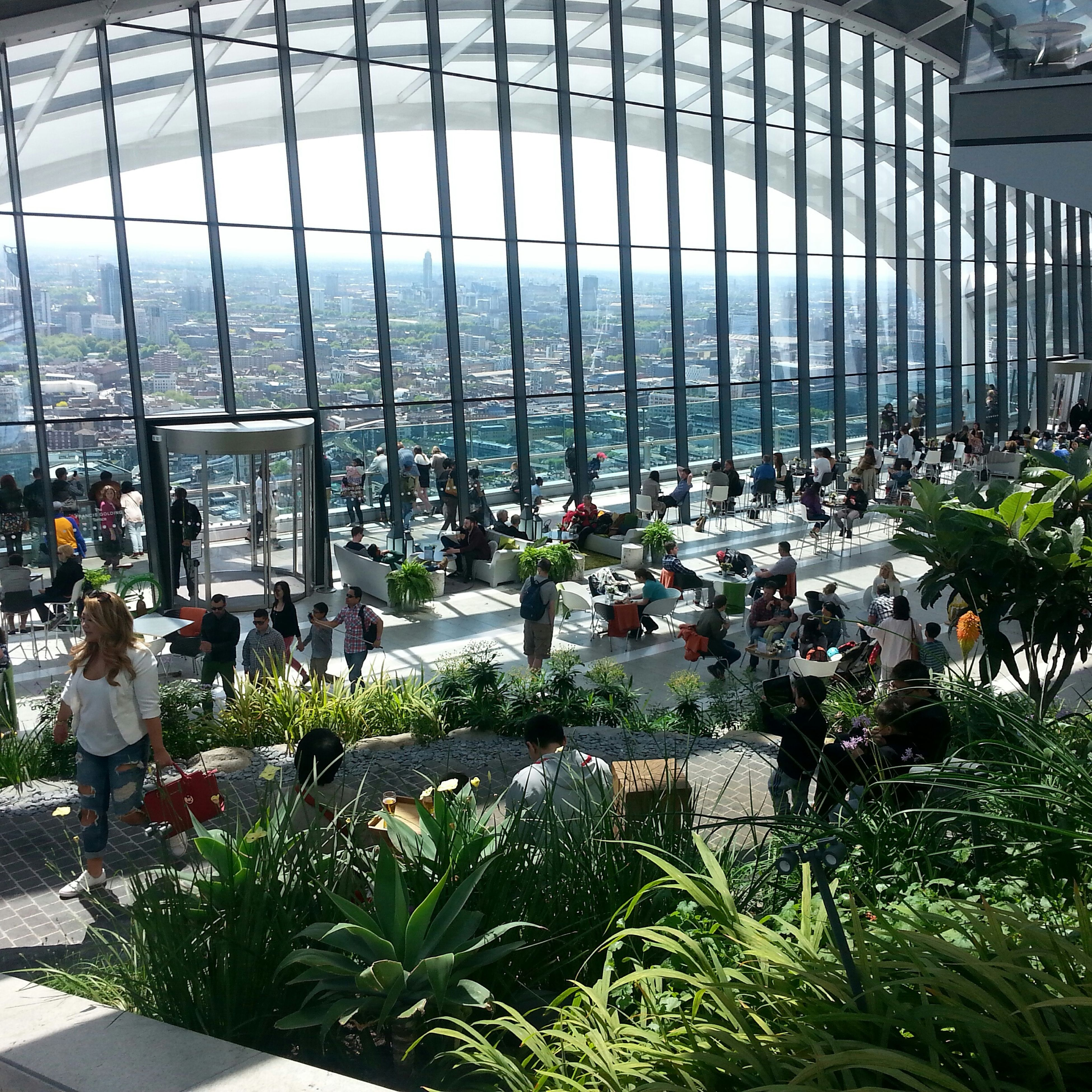 architecture, built structure, building exterior, plant, city, potted plant, growth, flower, high angle view, tree, day, sunlight, men, chair, incidental people, city life, building, person, green color