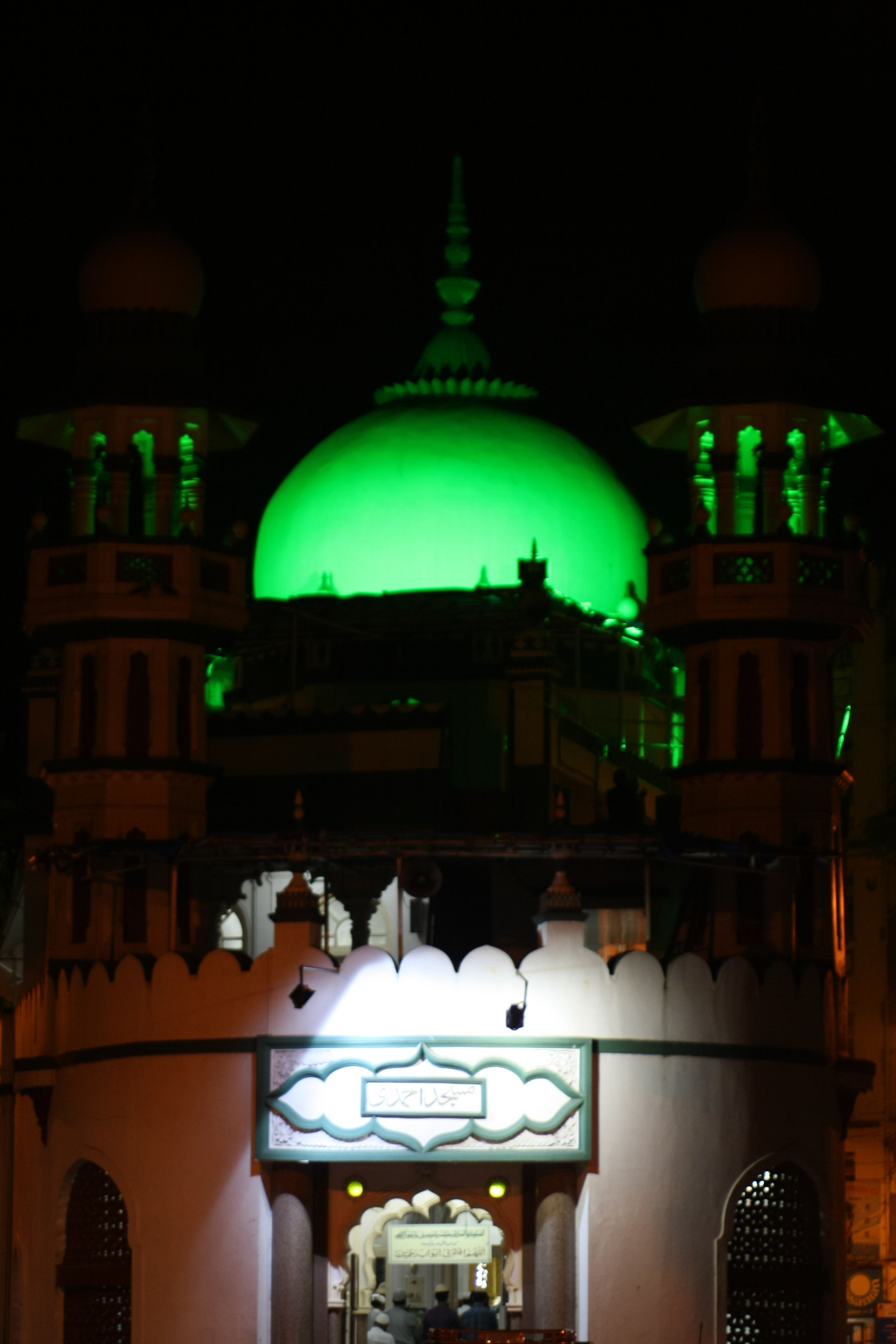 illuminated, night, architecture, low angle view, green color, built structure, building exterior, animal themes, sky, high section, zoology, lit, no people