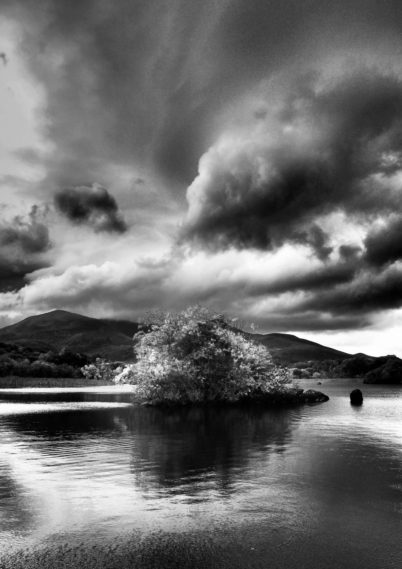 Lough Leane b+w @ Ross Castle Killarney  Ireland Water Cloud - Sky Reflection Nature Beauty In Nature Outdoors Scenics Landscape Landscapes Tree Reflection Lake Lake View Lough Leane Lough EyeEm Nature Lover Autumn Travel Destinations Black And White Black & White