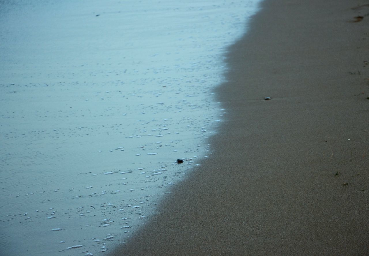 Border Borderline Water Sea Beautifully Organized Nature Beach The Week On EyeEm My Year My View