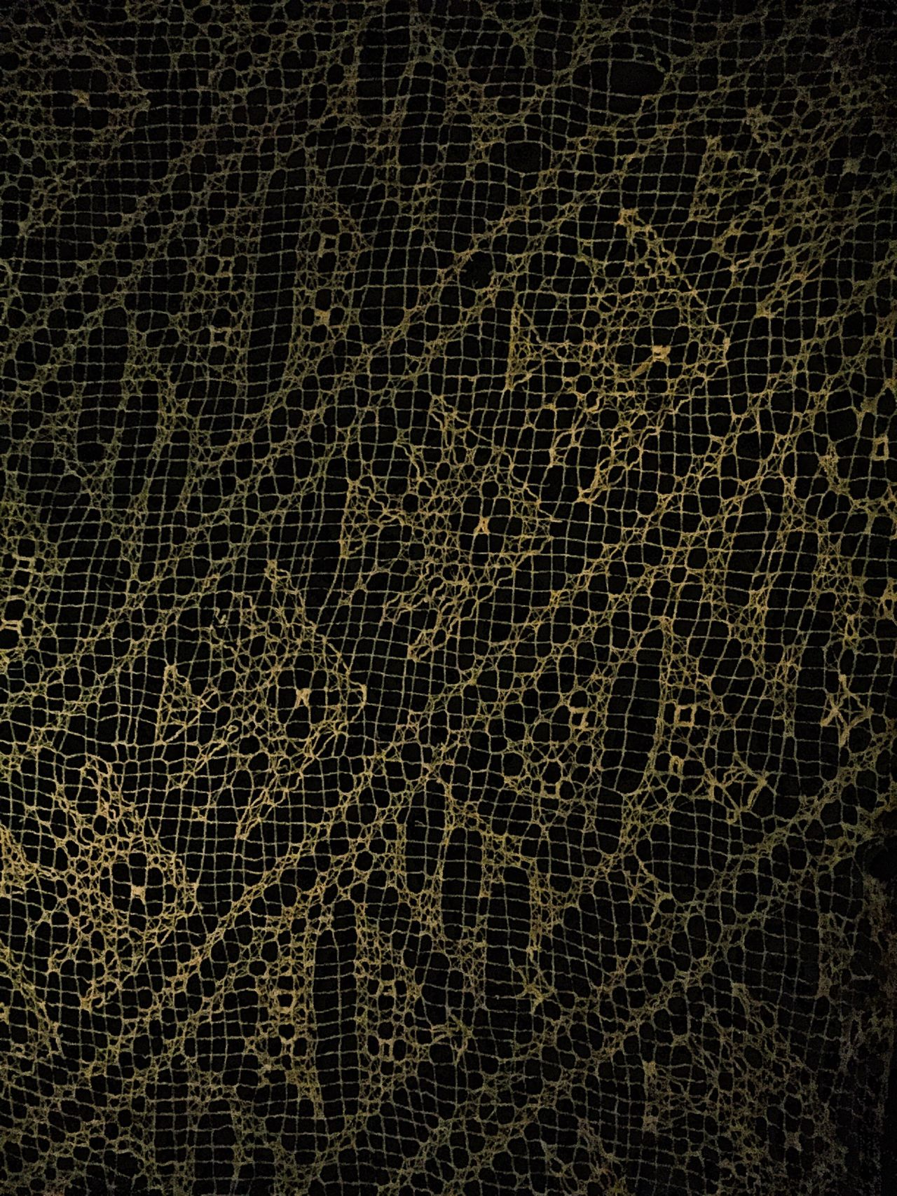 Patterned net Textured  Backgrounds Pattern Dirty Abstract Material Full Frame Textured Effect Fashion Rough Close-up No People Nature Day ScienceMuseum EyeEm Best Shots EyeEmNewHere Eyeem Market