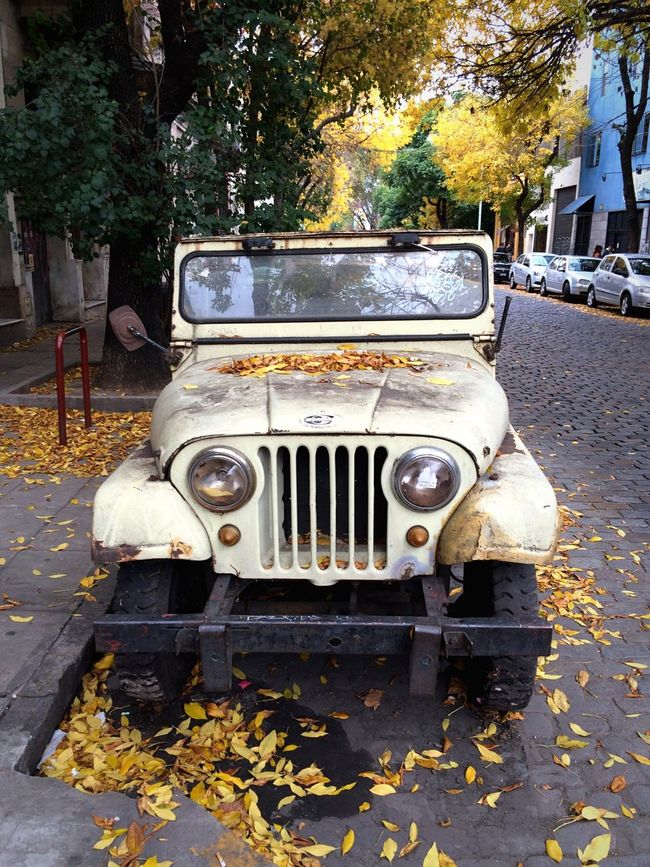 Old car. Argentina Buenos Aires, Argentina  Buenosaires Buenos Aires Car Old Car Rust Rusty Autos Rusty Car Autumn Autumn Leaves Autumn Colors Autumn Collection Autumn🍁🍁🍁 Autumn Colours Yellow Leaves Autumnbeauty Autumn Melancholy Autumn 2016 Autumnleaves Land Vehicle Melancholy Pale Abandoned No People