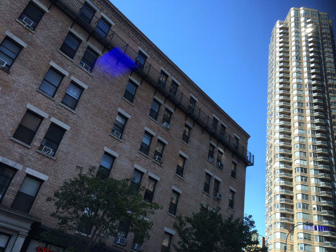 architecture, building exterior, built structure, low angle view, window, tree, day, no people, blue, clear sky, outdoors, sky, city