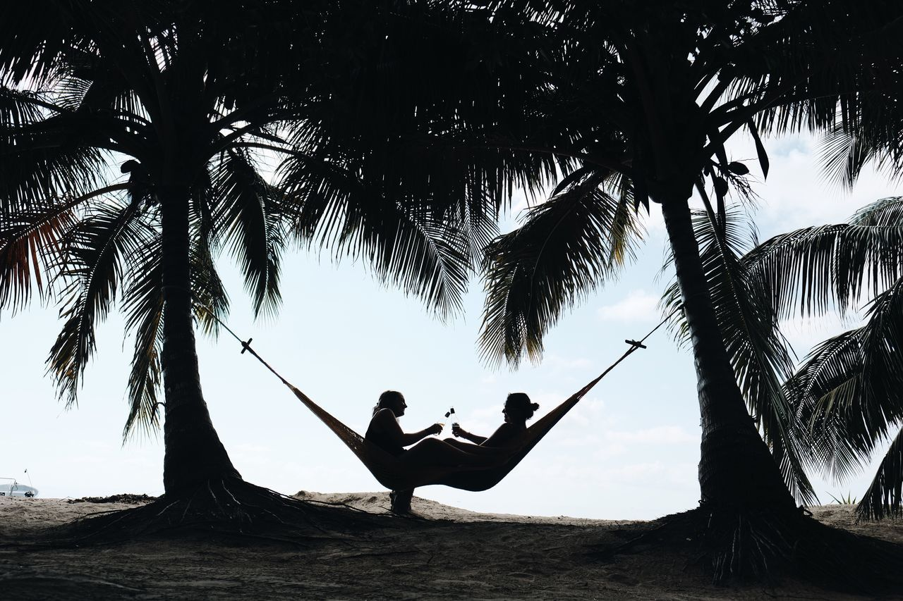 Cheers, to the weekend! two people full length leisure activity Silhouette real people Palm tree togetherness outdoors beach Nature people friendship Tree Adults Only day bff Adult Providencia hammock Silhouette cheers