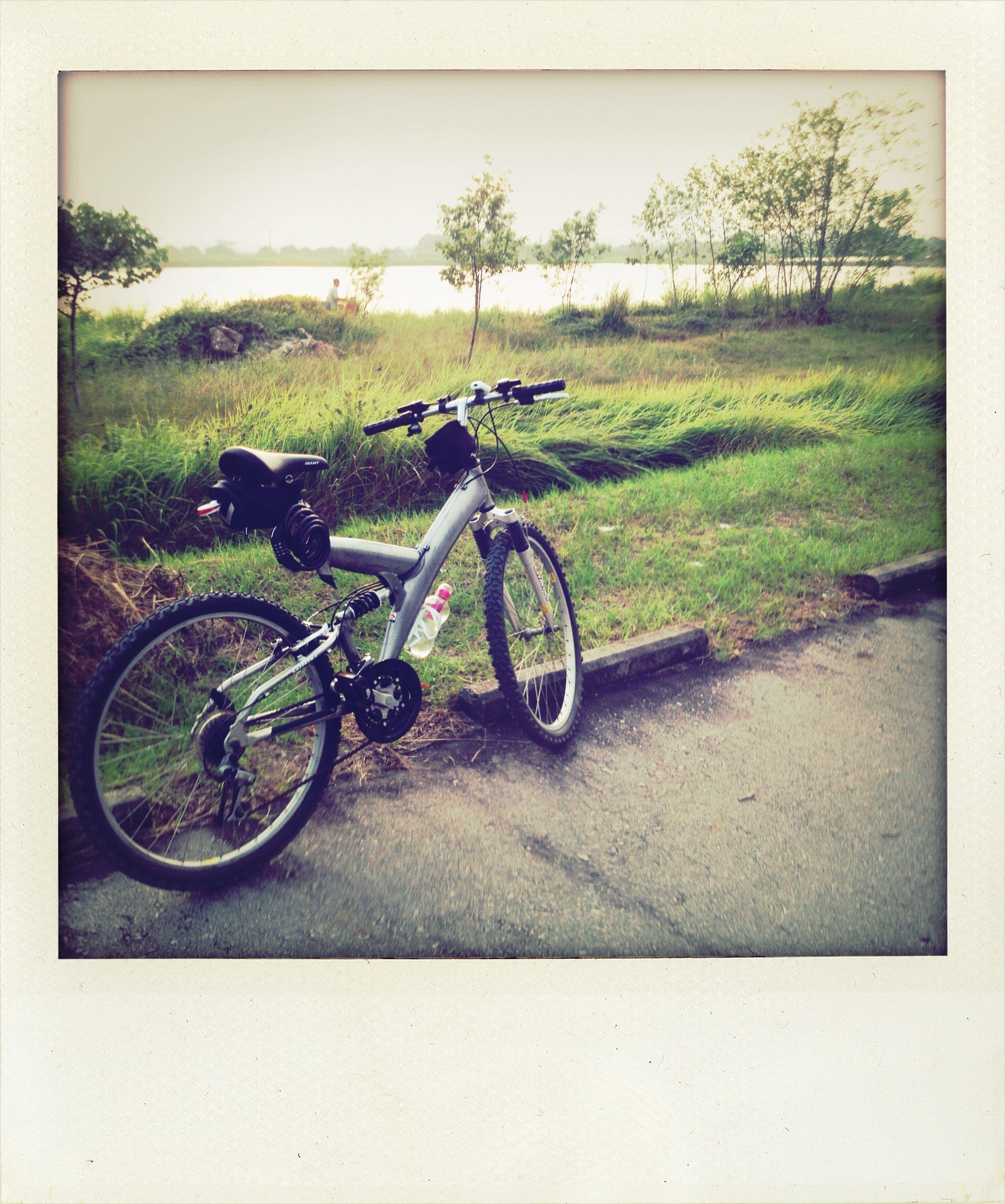 cycling at Nam Sang Wai Cycling