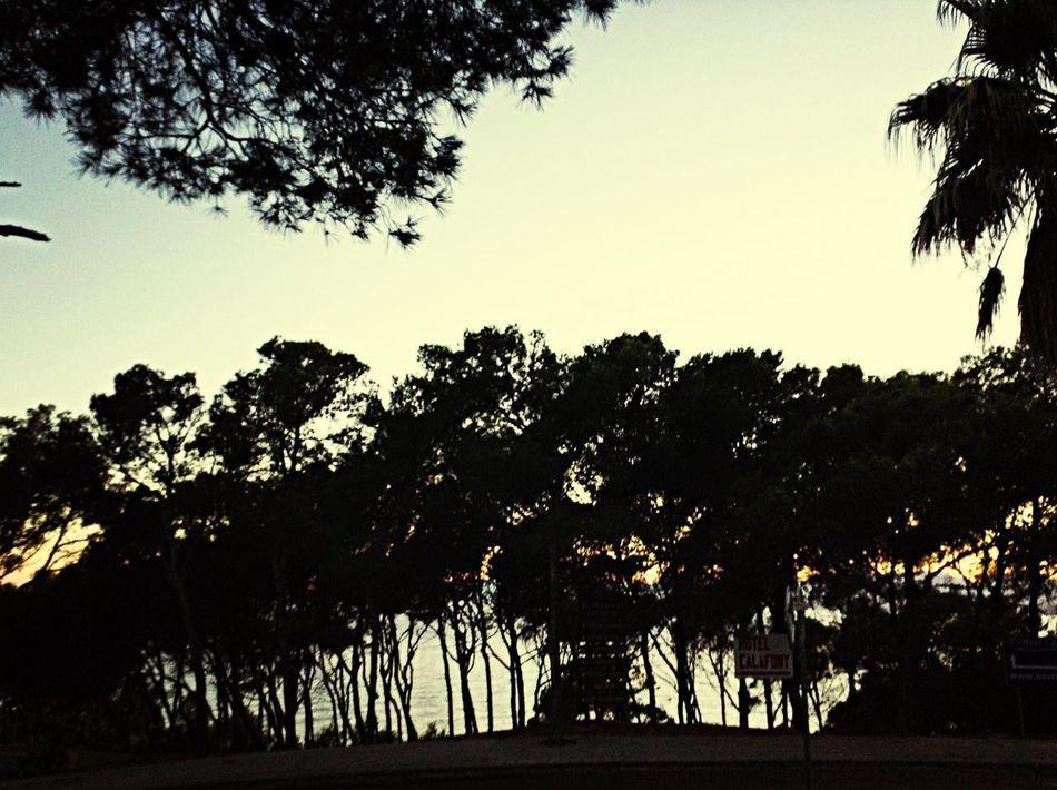 SPAIN Amazing Lovely Sky