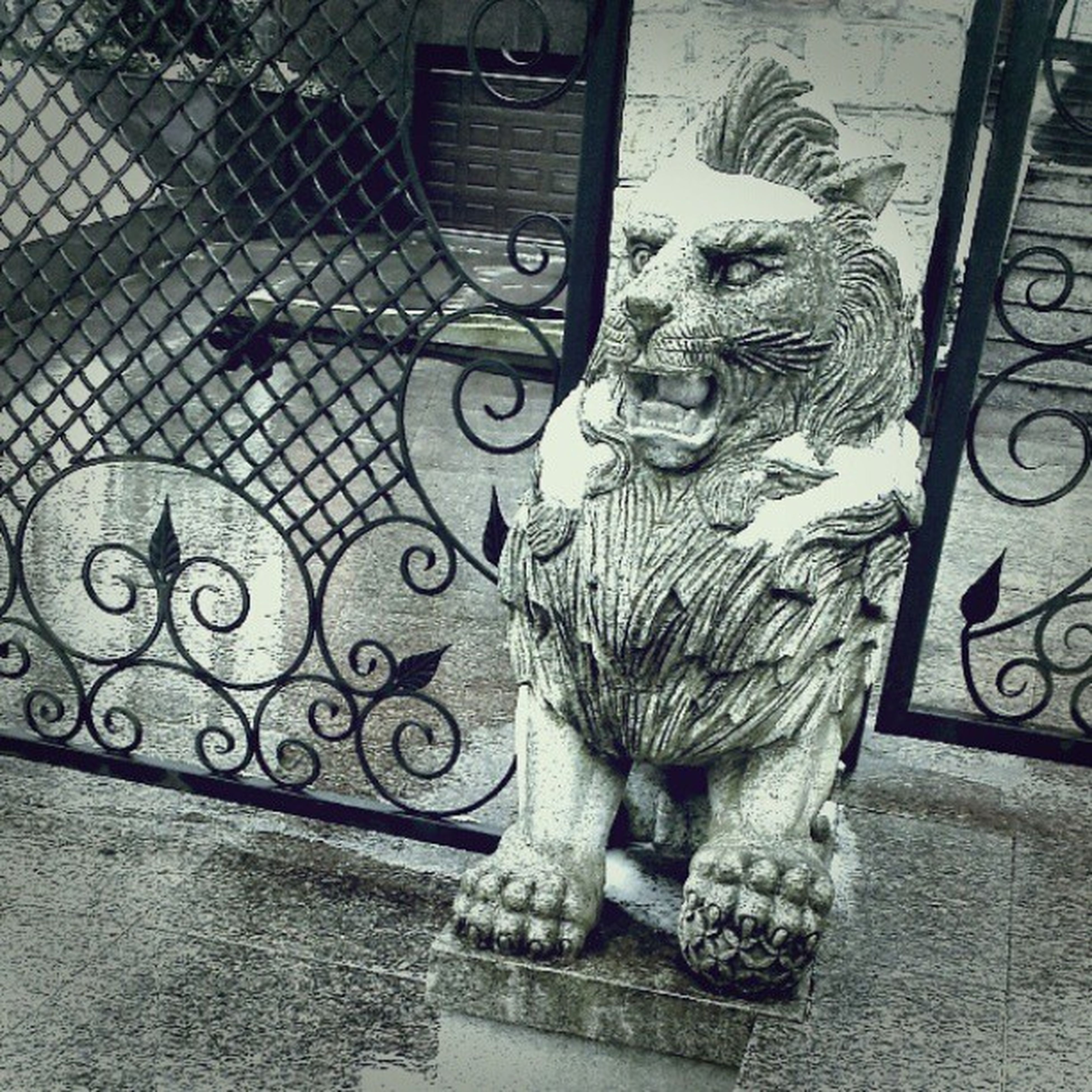 Svetlogorsk House Lion Sculpture