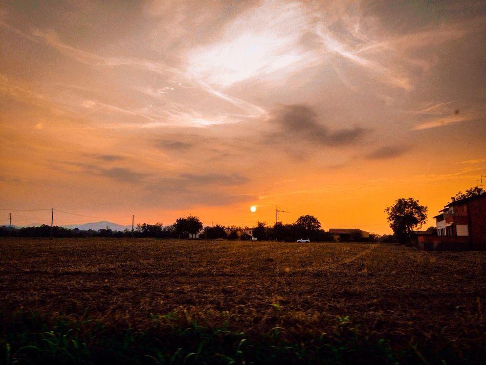 Sunset Scenics Landscape Tranquil Scene Rural Scene Tranquility Orange Color Beauty In Nature Agriculture Field Sky Dramatic Sky Nature Sun Non-urban Scene Cloud - Sky Farm Majestic Outdoors Vibrant Color Piacenza Pianura