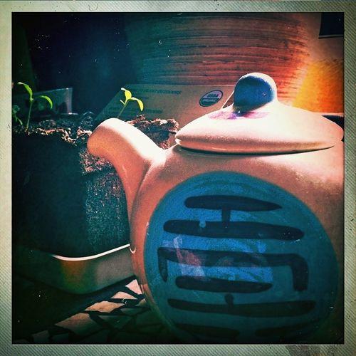Relaxing Tea Eye4photography