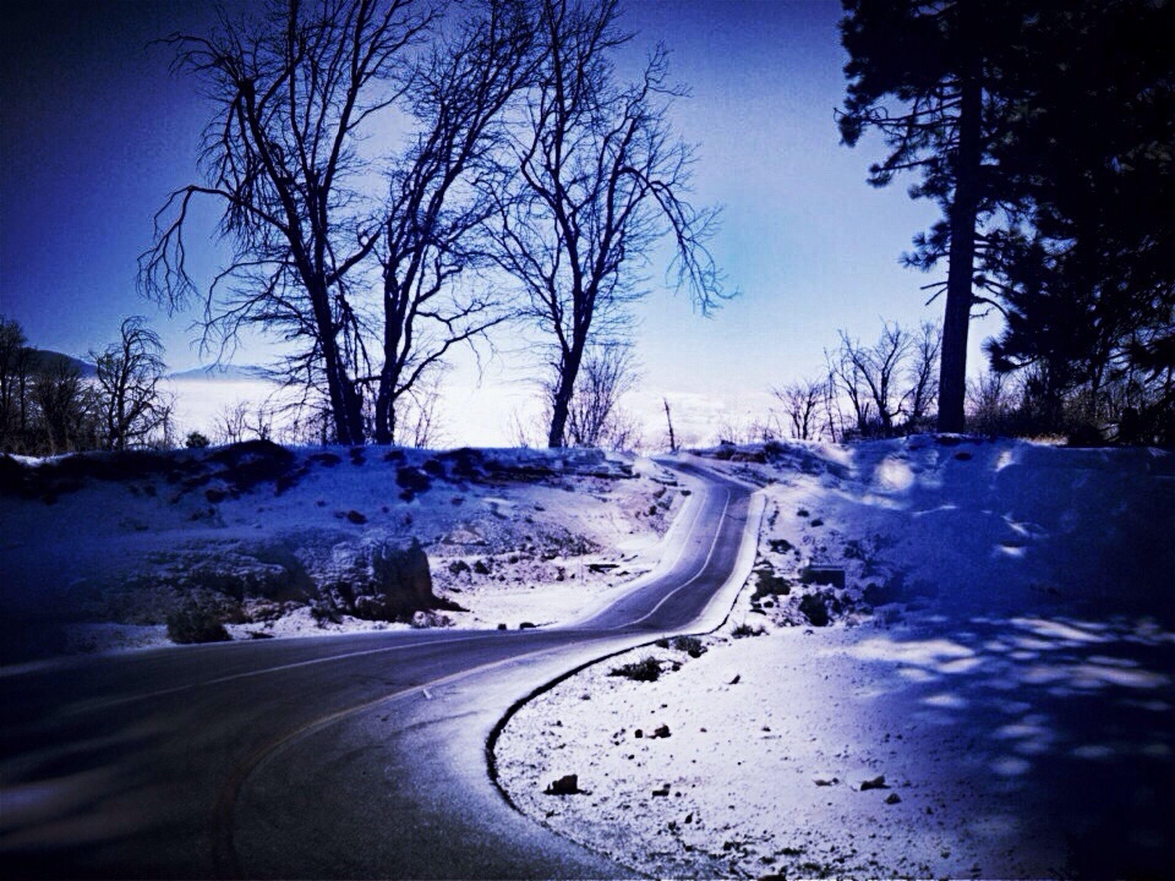 snow, winter, transportation, cold temperature, road, bare tree, the way forward, season, clear sky, tree, diminishing perspective, car, street, nature, weather, covering, vanishing point, country road, sky, landscape