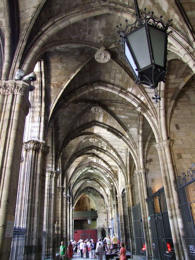 Cloisters, Cathedral La Seu Arches Architectural Columns Architecture Barcelona Cathedral Cathedral La Seu Ceiling Church City Cloister Culture Historical Building Incidental People Place Of Worship Religion Spaın Sunlight And Shadow Tourism Tourist Attraction  Travel Destination Worship