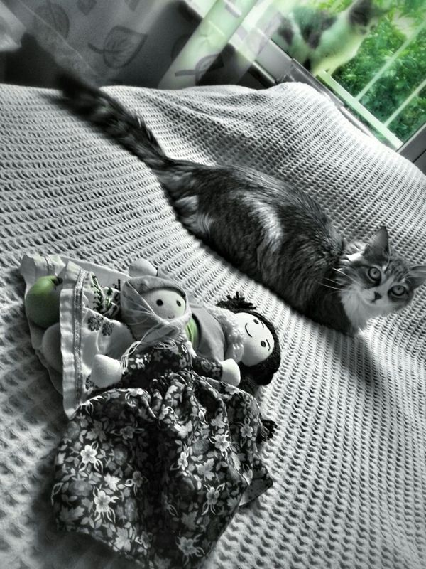 So...?! blackandwhite pets black and white Things that are green by Sinemis Koç