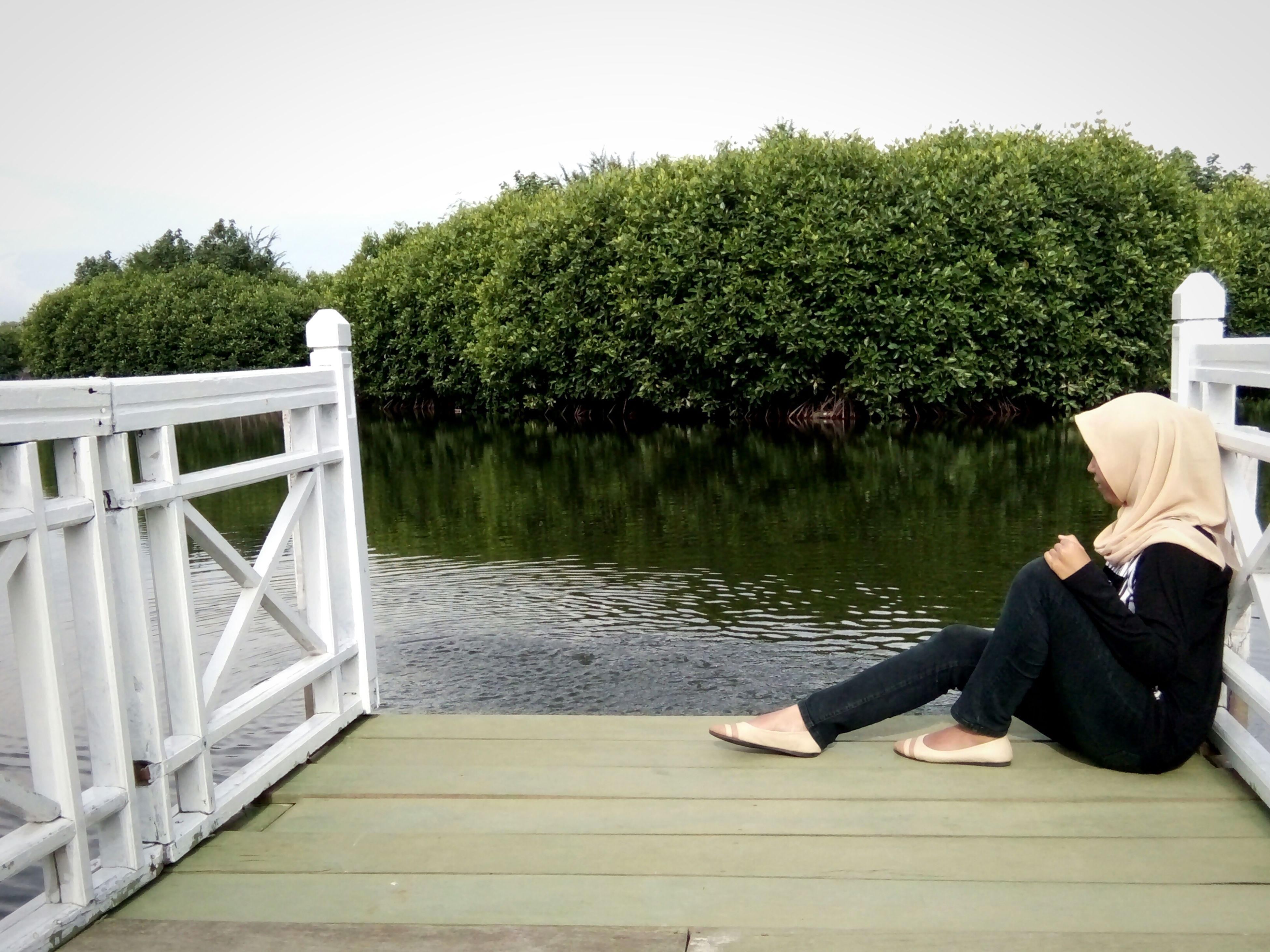 tree, leisure activity, lifestyles, water, lake, rear view, railing, full length, casual clothing, sitting, wood - material, tranquility, relaxation, pier, person, nature, tranquil scene, standing