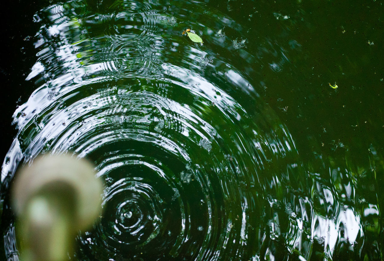 Beauty In Nature Day Drop Freshness Motion Nature No People Outdoors Rippled Splashing Droplet Water