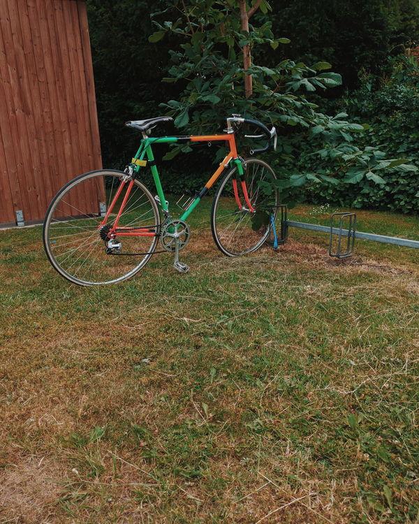 Bicycle Bike Minimalism Nature Nexus6P Simplicity Simplicity Is Beauty. VSCO
