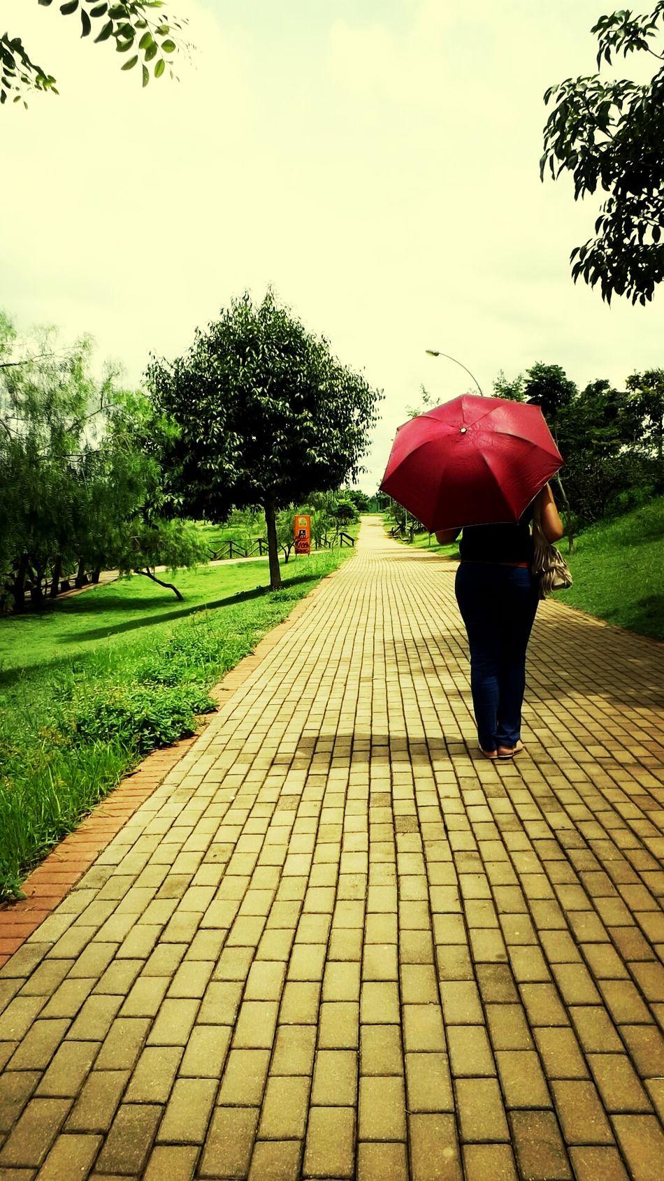 Que nada impeça você de caminhar no parque... Paisagens Passeio  Beautiful Moments !! #SMPhotos