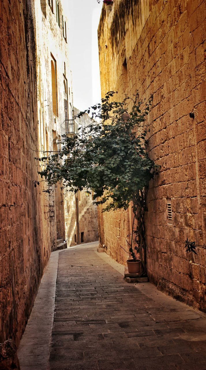 architecture, built structure, the way forward, building exterior, alley, no people, outdoors, day