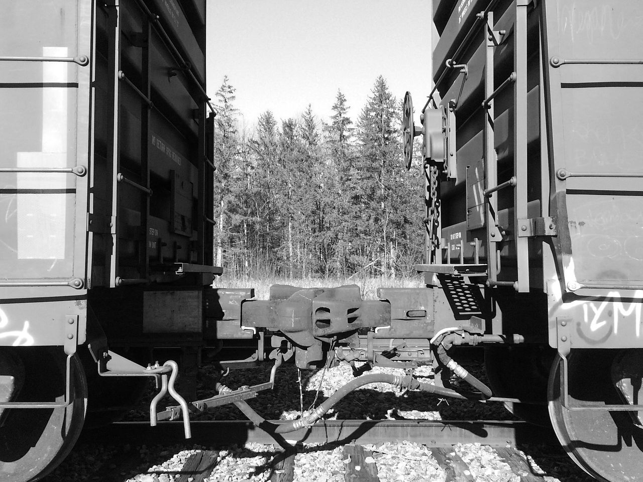 Heavy-duty... Bnw_connection for Bnw_friday_eyeemchallenge Train Coupling Linked Trees Treeline Frame Within A Frame Two Is Better Than One Monochrome Photography The Great Outdoors - 2017 EyeEm Awards