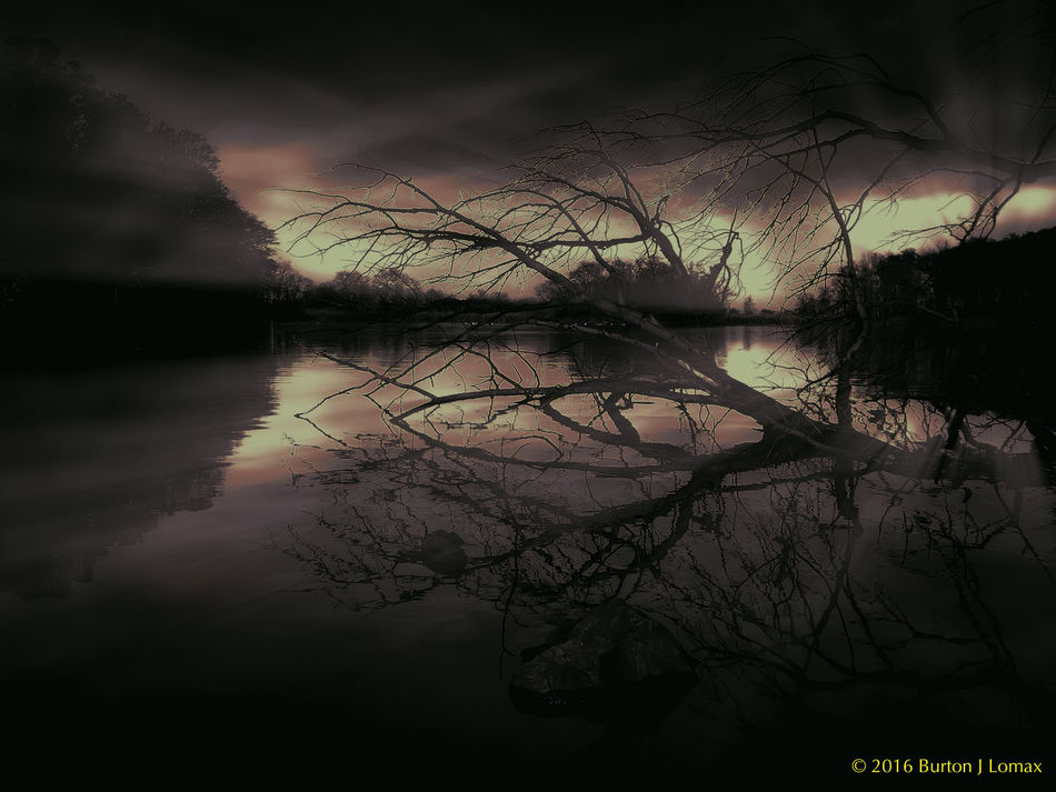 Red Sun At Midnight Bare Tree Beauty In Nature Bjl Branch Burtonjlomax Cloud Dayintonight Idyllic Majestic Pond Red Reflection Remote Silhouette Sky Sunbeam Surf Surreal_manipulation Surrealism Surrealist Art Surrealistic Tranquility Tree Water Water Surface