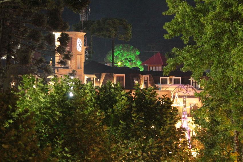 Architecture Building Exterior House Illuminated Night Outdoors Tree