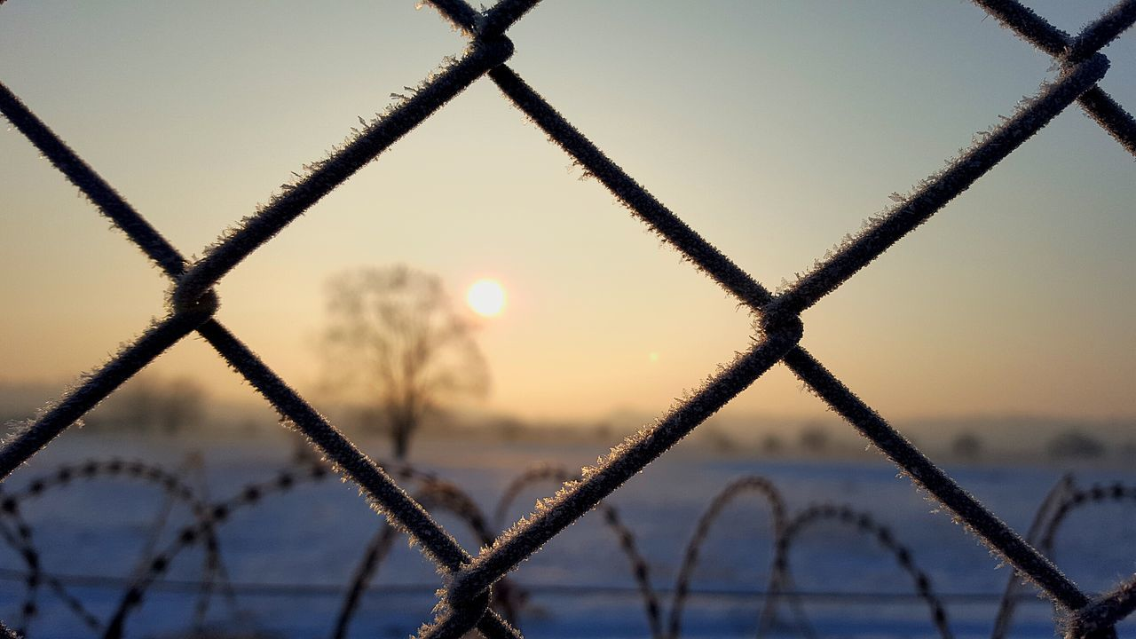 Protection Fence Metal Sunlight Sky Backgrounds Outdoors Winter Border Photography Serbia Hungary Sunrise Wirefence Snow Freezing Cold Tree Beauty In Nature Separation Migration Focus On Foreground