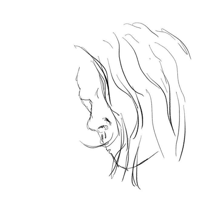 Sanducci Lineart Drawing