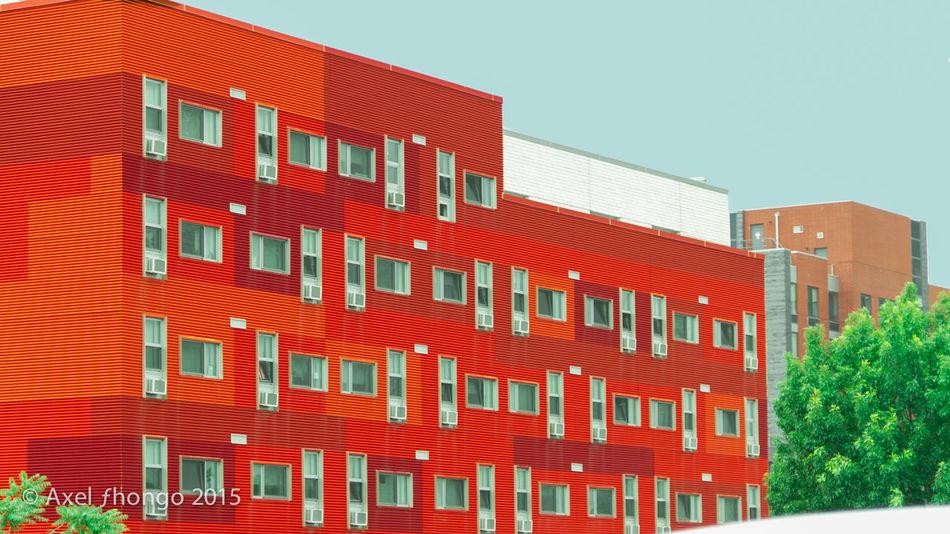 Brooklyn NYC NYC Photography In Brooklyn Orange Building City The Traveler - 2015 EyeEm Awards The Architect - 2015 EyeEm Awards