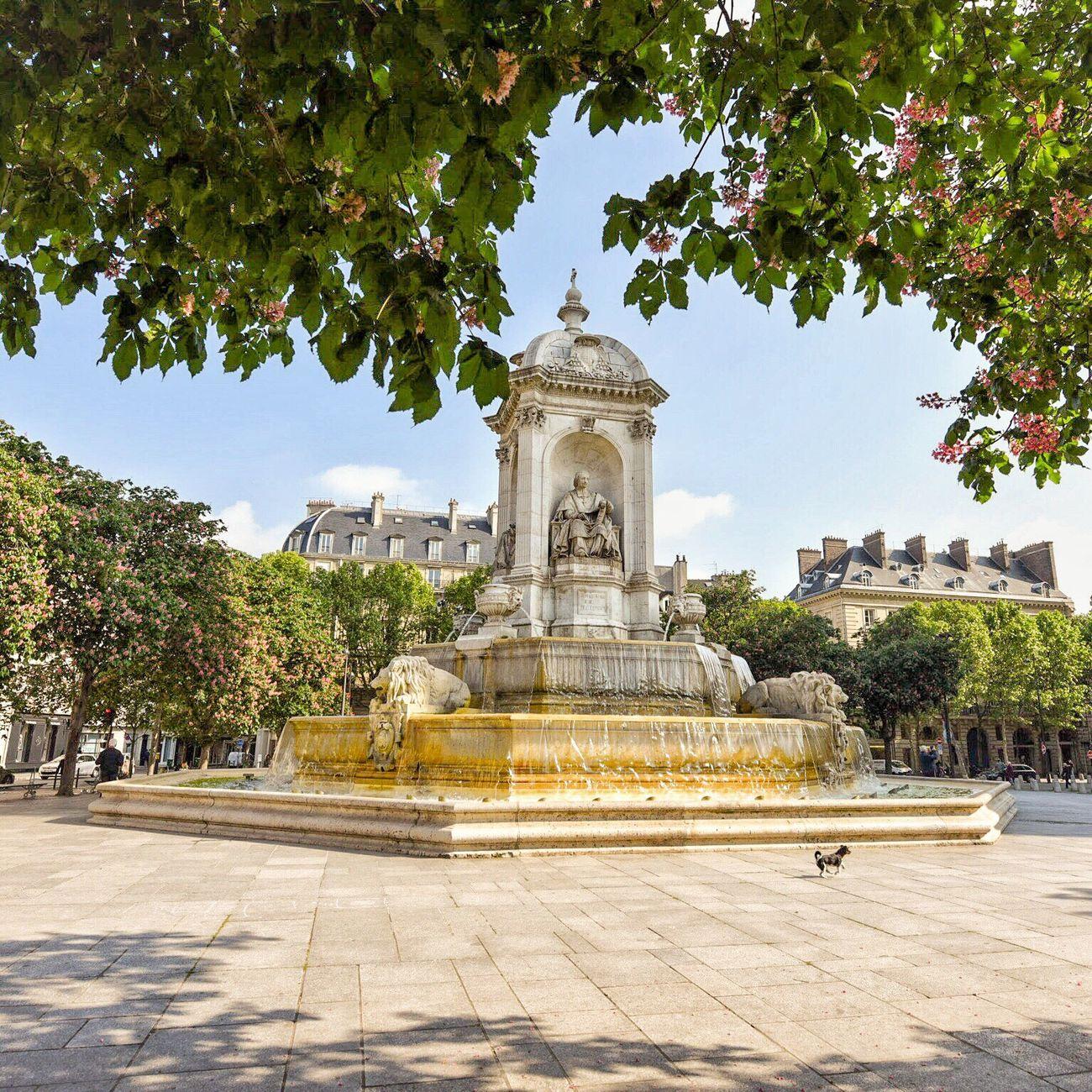Ready for the weekend! Bonsoir Paris ! Tree Monument Travel Destinations Paris ❤ Eyem Best Shot - Architecture Photooftheday Paris Parisweloveyou EyeEm Best Shots