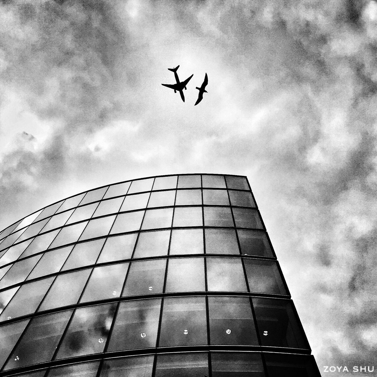 low angle view, architecture, flying, sky, built structure, building exterior, airplane, cloud - sky, travel, day, no people, transportation, mid-air, outdoors, modern, tall, city