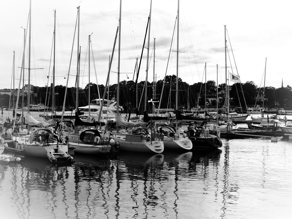 Sailboats in harbour Sailboat Sailboat Masts Sailing Boat Sailing Boats Harbour Harbour View Blackandwhite Black & White Blackandwhite Photography Black&white Blanco Y Negro Black And White Photography Blancoynegro Black And White