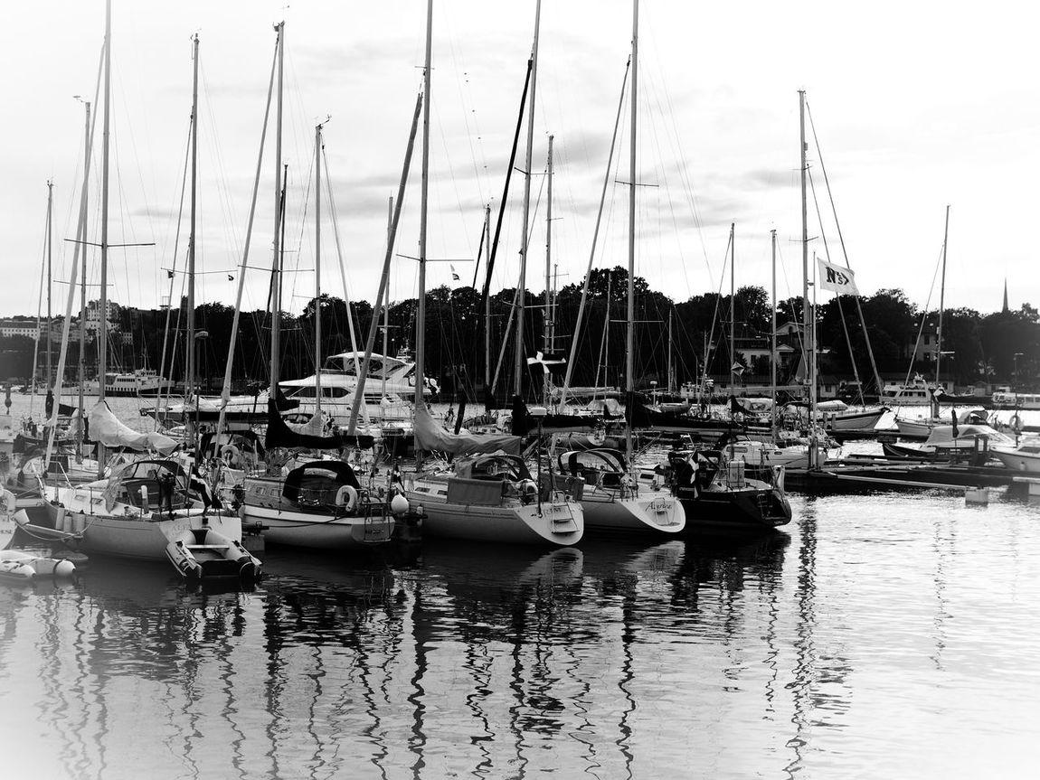 Sailboats in harbour Sailboat Sailboat Masts Sailing Boat Sailing Boats Harbour Harbour View Blackandwhite Black & White Blackandwhite Photography Black&white Blanco Y Negro Black And White Photography Blancoynegro Black And White