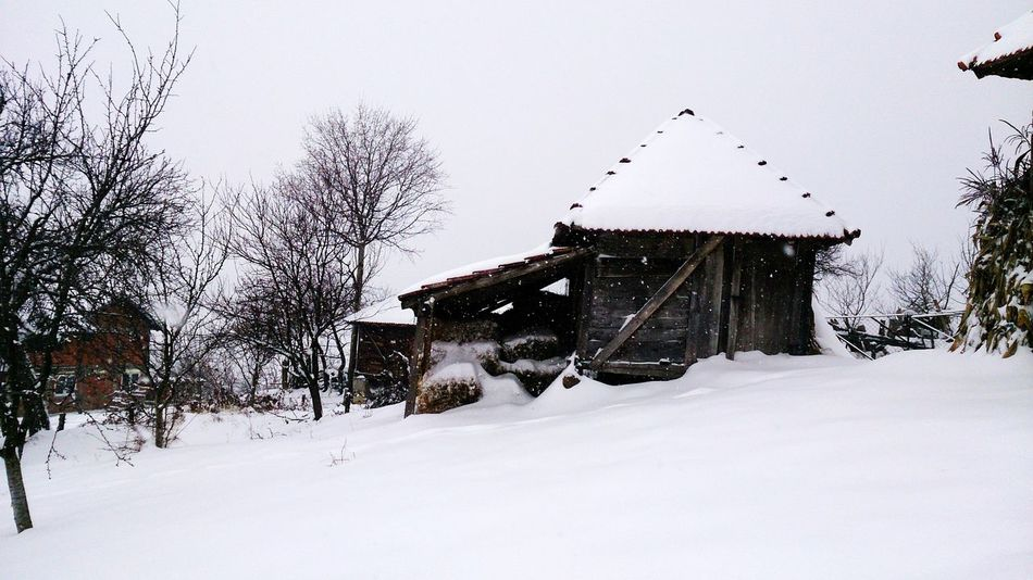 Little barn on a farm. Snow Enjoying The View Love Snow Winter Trees Winter Wonderland EyeEm Nature Lover Its Cold Outside
