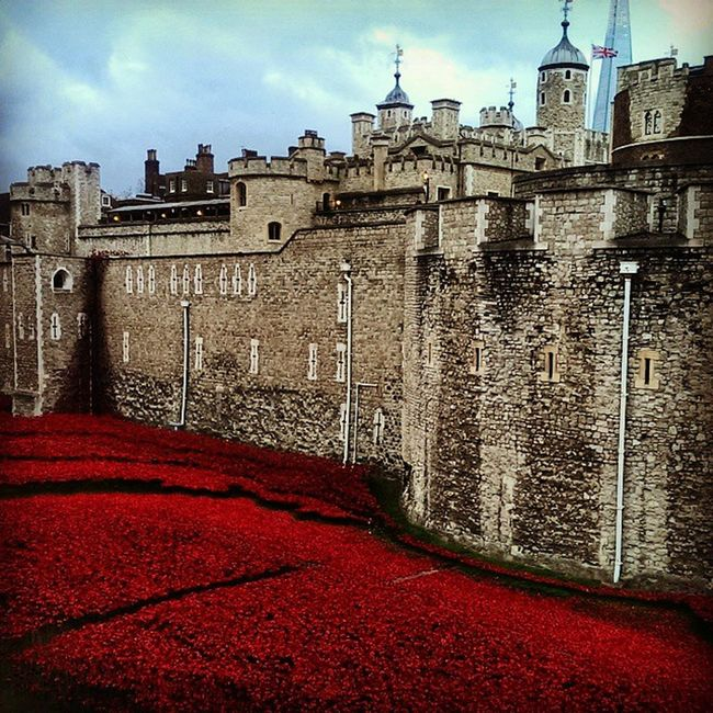 London Tower_Of_London Sea_Of_Red Red Poppy Symbol Remembrance Day Wars Fallen Soldiers Honour Respect Commemorating Armistice Instalondon Respect Art Memorial Iconic 1Poppy = 1Life