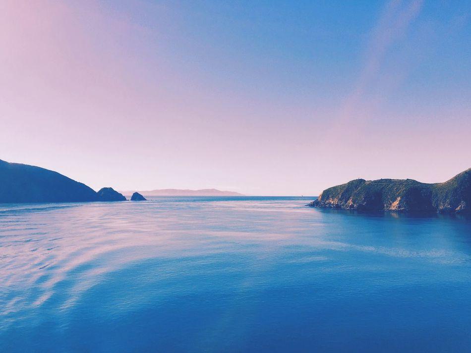Still Cook Strait Ferry New Zealand Simplicity