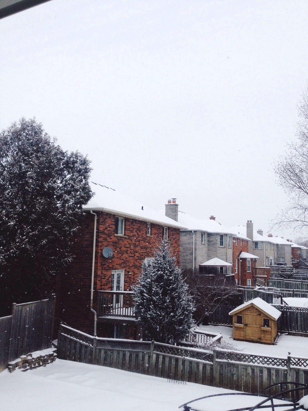 Snow Day ❄️