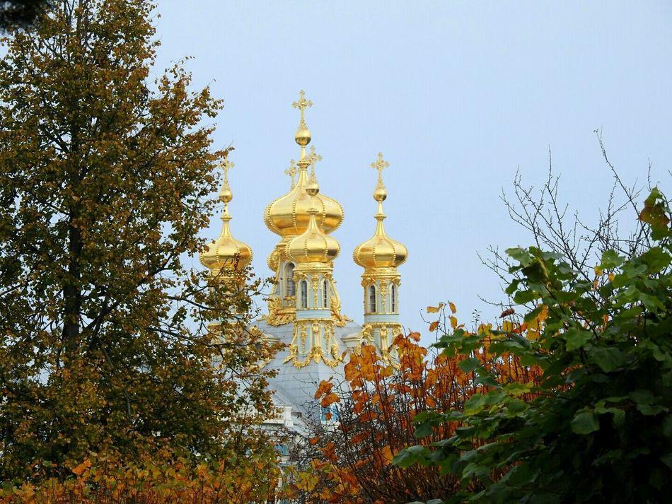 Aleksandrovskii Park Ekaterina II Palace Dome Church Tourism Building Exterior Religion Tree Day Famous Place TakeoverContrast Pushkin City Autumn🍁🍁🍁 Colors Of Sankt-Peterburg Russia