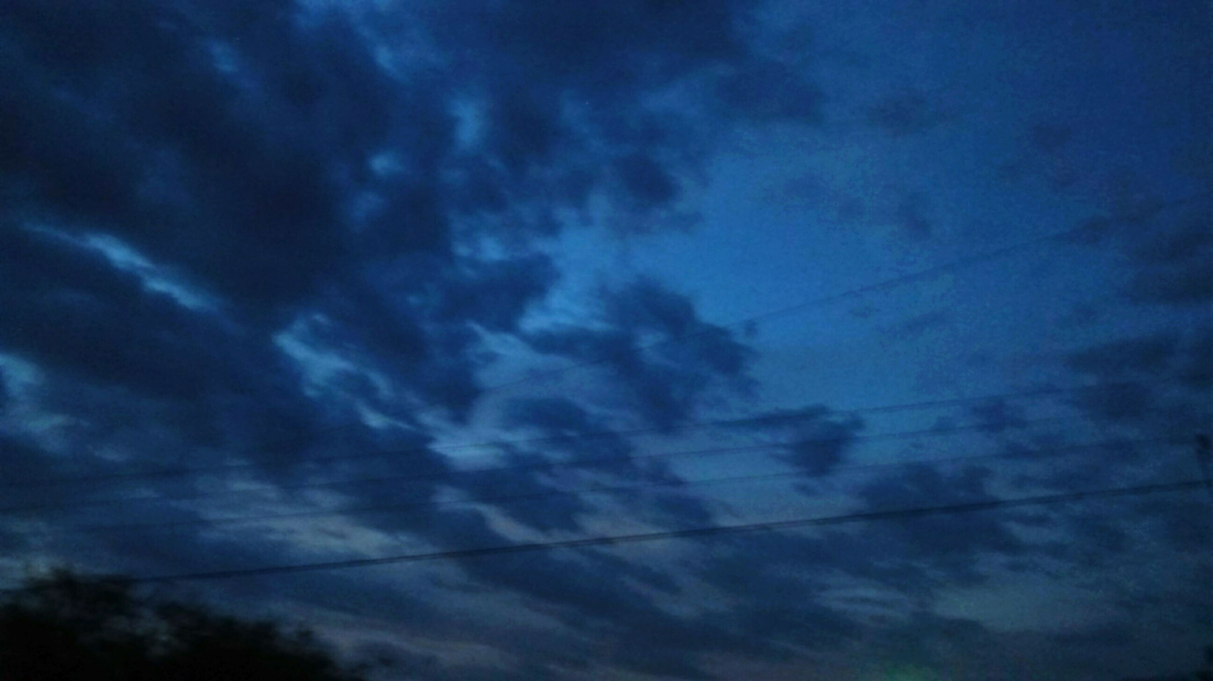 low angle view, blue, sky, cable, beauty in nature, nature, scenics, tranquility, tranquil scene, power line, cloud - sky, day, cloud, power cable, outdoors, cloudscape, no people, treetop, high section, majestic, atmosphere, non-urban scene, atmospheric mood, dramatic sky