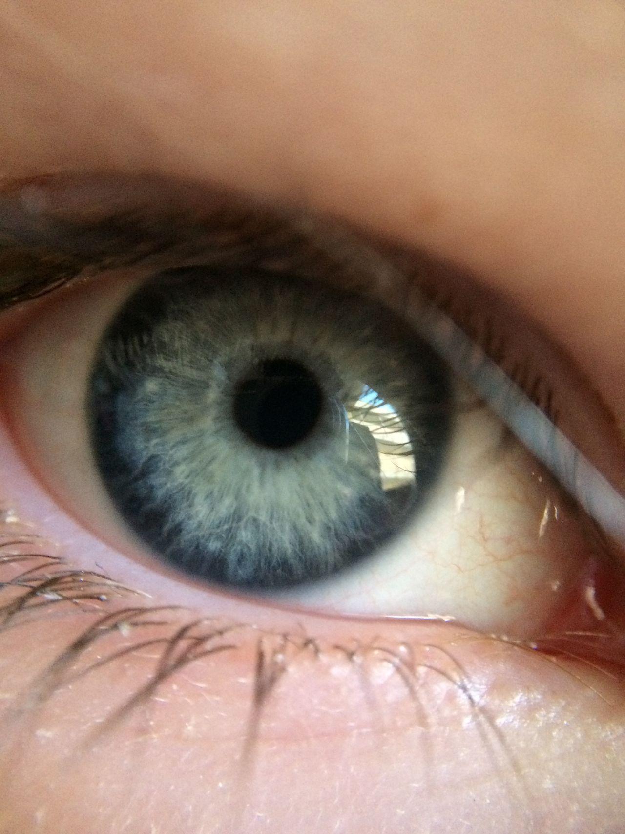 Beautiful stock photos of eyes, Budapest, Close-Up, Extreme Close-Up, Eyelash