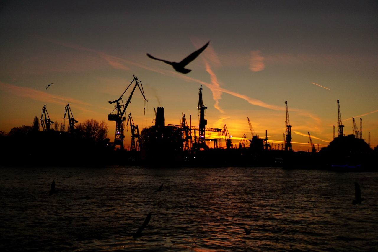 Good Morning Hamburg Hafencity Sky Outdoors Waterfront Silhouette No People City Water Architecture Harbor Sony A6000 Seagulls Nature Eyeemphoto Real Photography Enjoying The View Beauty In Nature Sunset Cityscapes Urban Skyline City Life