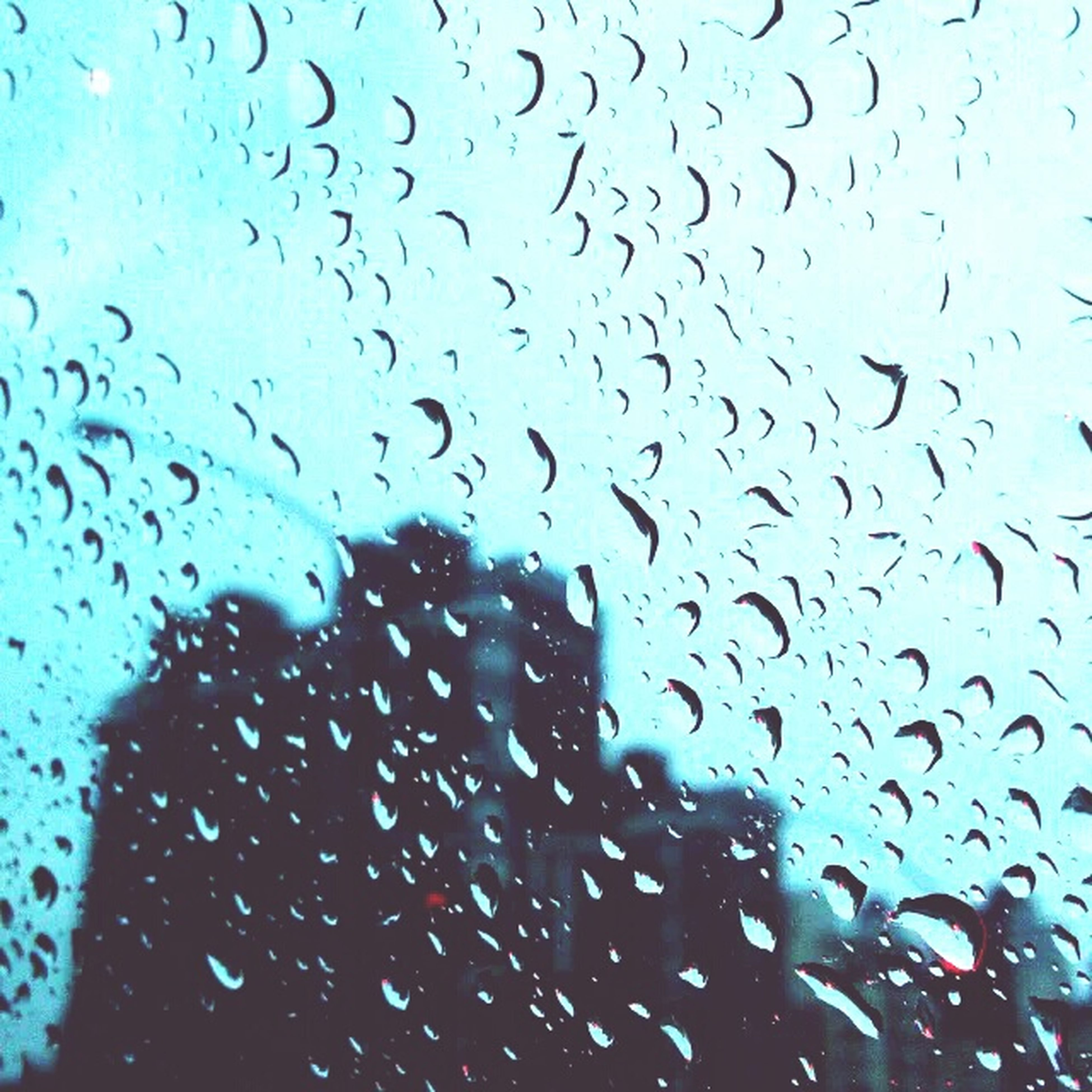drop, wet, window, rain, water, transparent, indoors, glass - material, sky, raindrop, weather, backgrounds, full frame, season, glass, focus on foreground, silhouette, dusk, cloud - sky, close-up