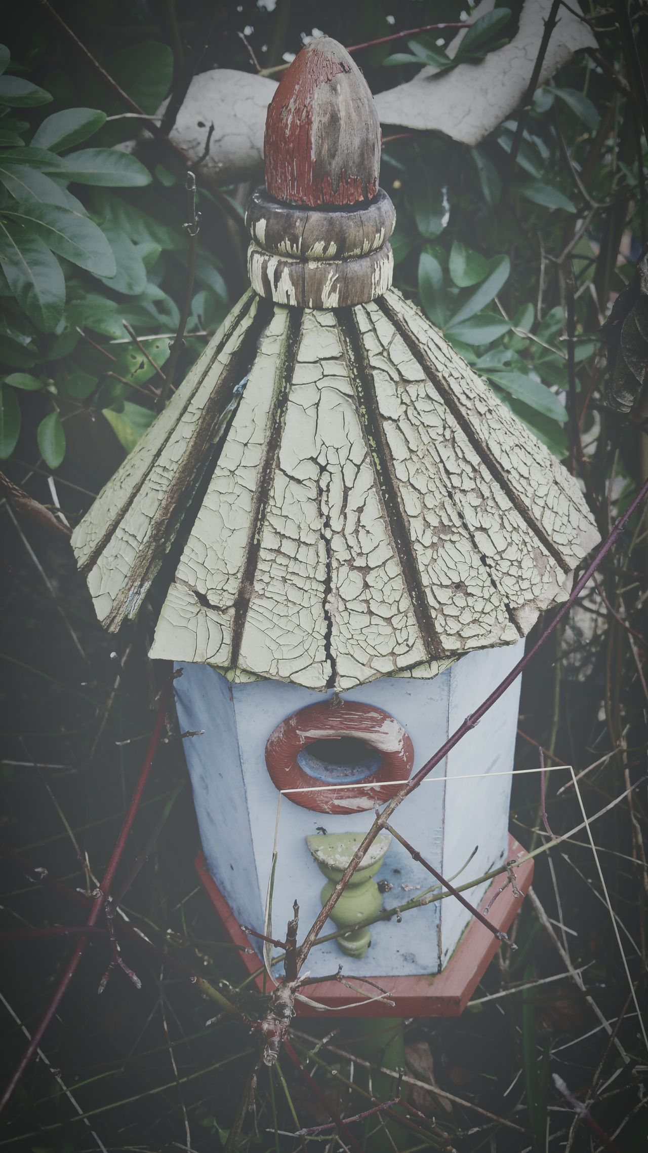 My Garden Needs A Paint Paint Weathered Aged Old Wood Bird Box Cracked Bird House