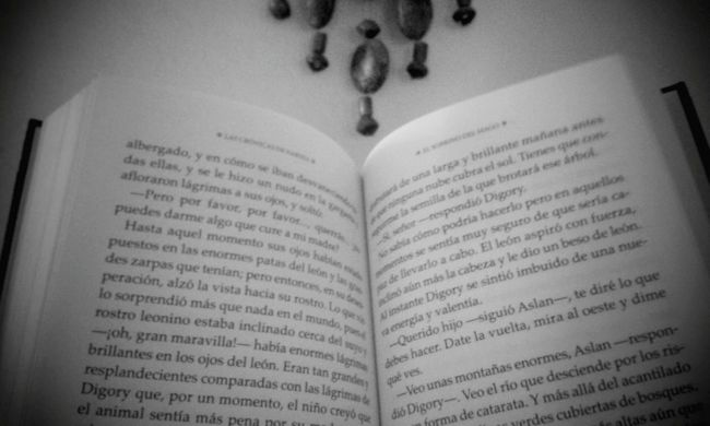Books Reading Cslewis Hello World Ambato Relaxing Black & White Narnia  Fantasybook I'm Bookworm Book Copyright©