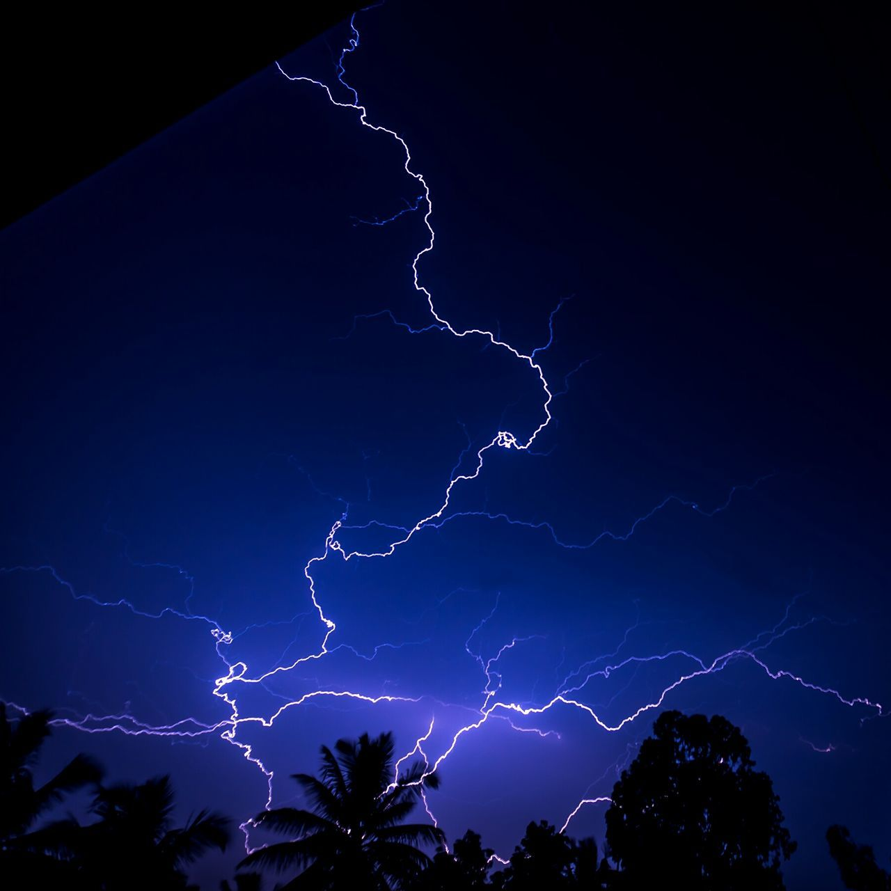 lightning, power in nature, forked lightning, night, beauty in nature, thunderstorm, storm, weather, dramatic sky, nature, silhouette, scenics, sky, danger, outdoors, electricity, no people, tree, blue, tranquility, low angle view, illuminated, storm cloud